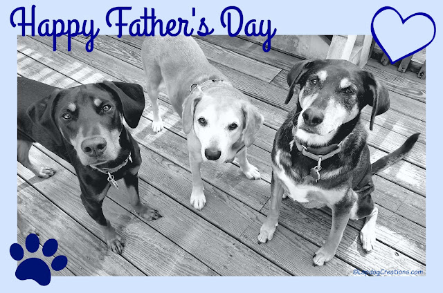 Happy Father's Day to all the Dads, of both 2 and 4 legged kids, from Penny, Sophie & Teutul #FathersDay #RescueDog #AdoptDontShop #LapdogCreations ©LapdogCreations