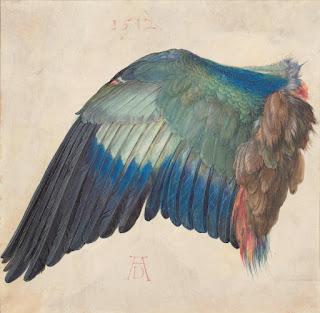 Albrecht Dürer Drawings- Albertina Museum