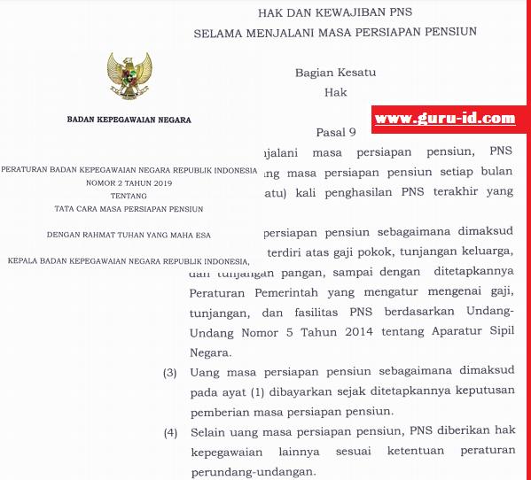 gambar peraturan BKN no 2 tahun 2019