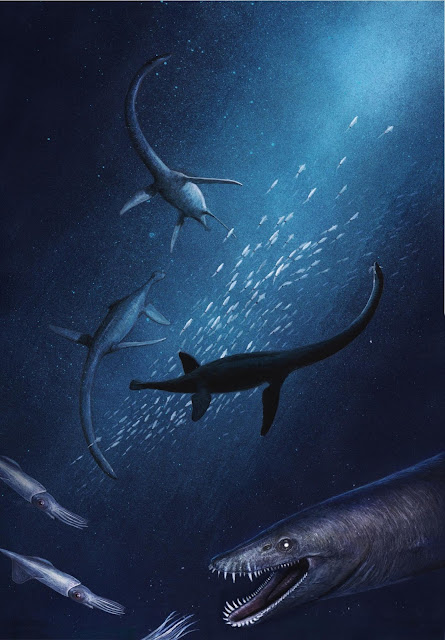 New ancient sea reptile found in Germany, the earliest of its kind