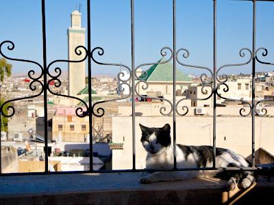 Вид с террасы на Фес, Марокко