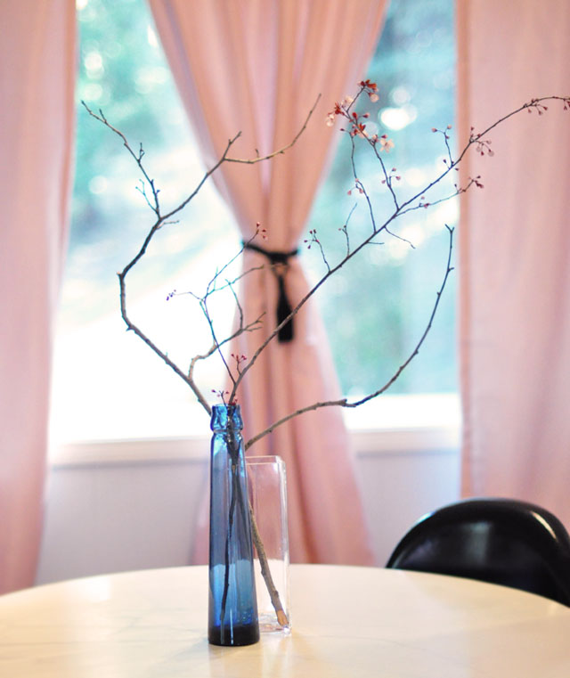 branches for decor