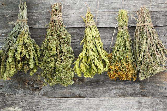 Ίαση ασθενειών με βάση το βότανο