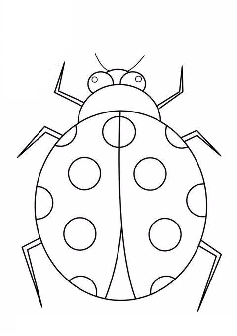 Tranh tô màu con bọ cánh cứng đơn giản