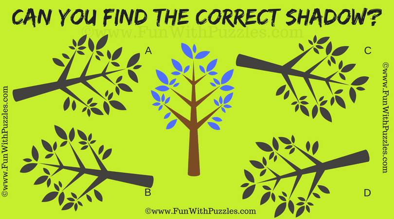 Tough Visual Brain Teaser for Adults with Answer-Fun With