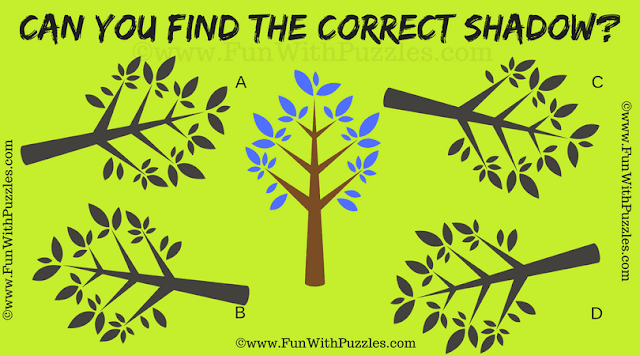 This tough visual brain teaser is for adults in which one has to find the correct shadow of the given puzzle image