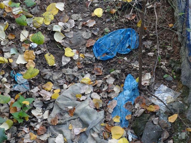 Εθελοντική δράση καθαρισμού στο ρέμα (ανάχωμα) Τούμπας - Πυλαίας