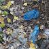 Τα σκουπίδια πνίγουν το ρέμα Τούμπας - Πυλαίας