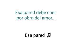 Leo Dan Esa Pared significado de la canción.