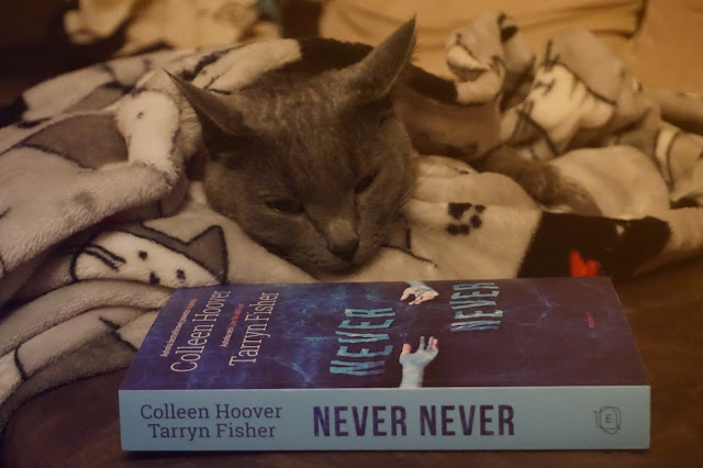 "#32 Colleen Hoover & Tarryn Fisher ""Never never"""