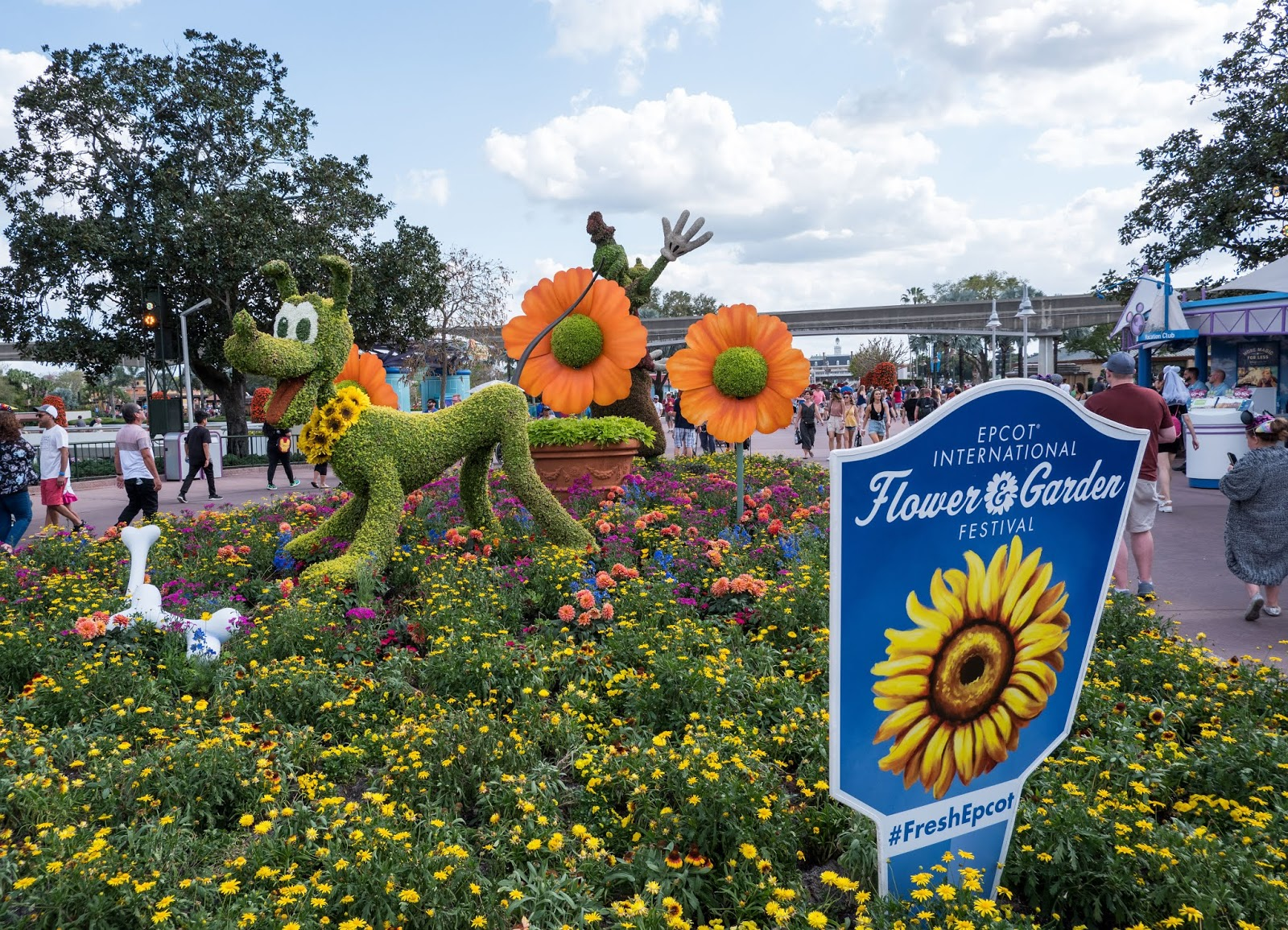 Pluto topiary at the 2019 Epcot International Flower and Garden Festival