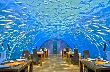 "The largest submerged restaurant ""Underwater"" .. soon in Dubai"