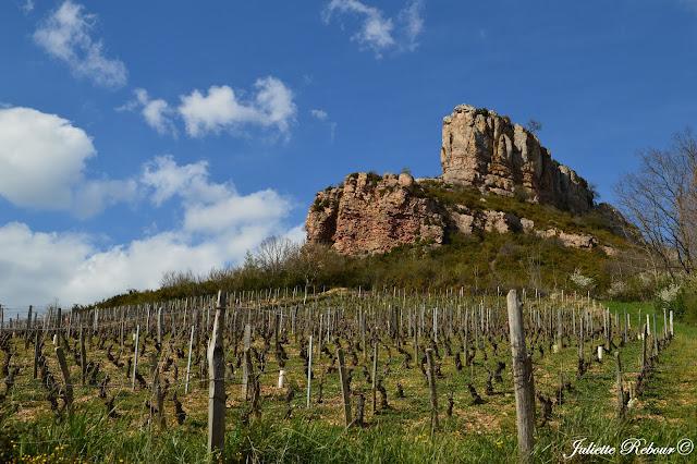 Roche de Solutré et vignes en Bourgogne