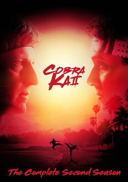 Cobra Kai Season 2 Dual Audio [Hindi-DD5.1] 720p HDRip ESubs Download