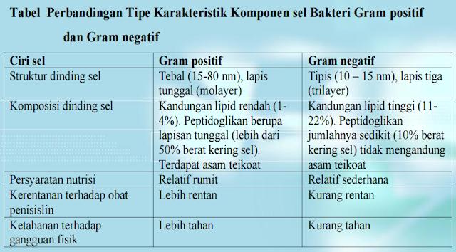 Tabel Perbandingan Tipe Karakteristik Komponen sel Bakteri Gram positif  dan Gram negatif