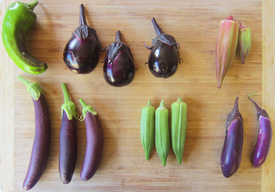 Image result for eggplant and okra