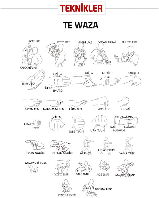 Te-Waza / Teknik Tangan Karate