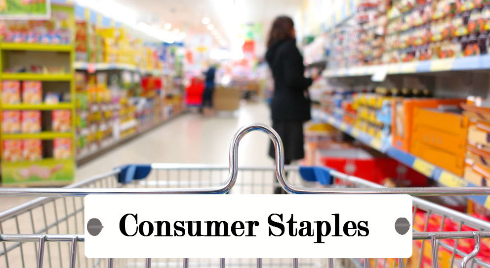An Outlook on Consumer Staples Leading Brands | Vyas Infotech