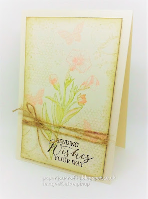 Paperjay Crafts, Butterfly Basics, Stampin Up