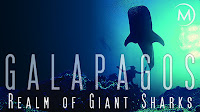Documental Galápagos Reino de tiburones gigantes Online
