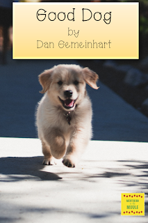 Picture of a dog running for review of Good Dog