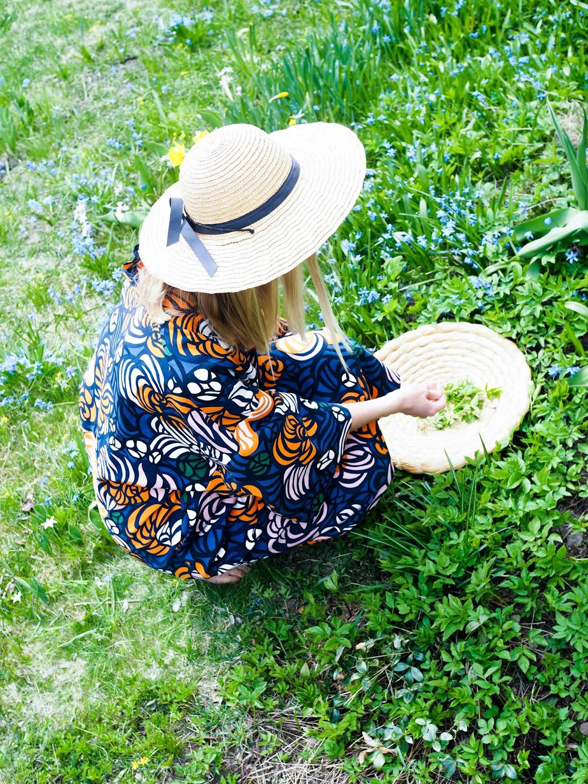 villiyrtit, villivihannesten poimiminen, vuohenputki, villivihannespesto, villiyrttipesto, Marimekko kaftaani, äitienpäivä