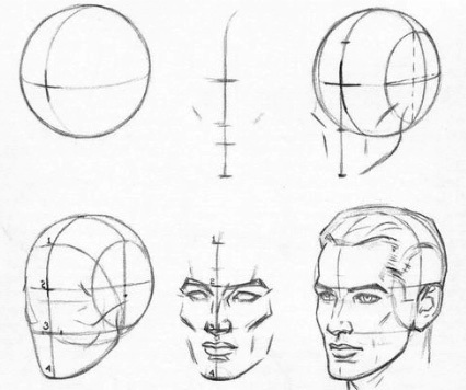 How to sketch a Head