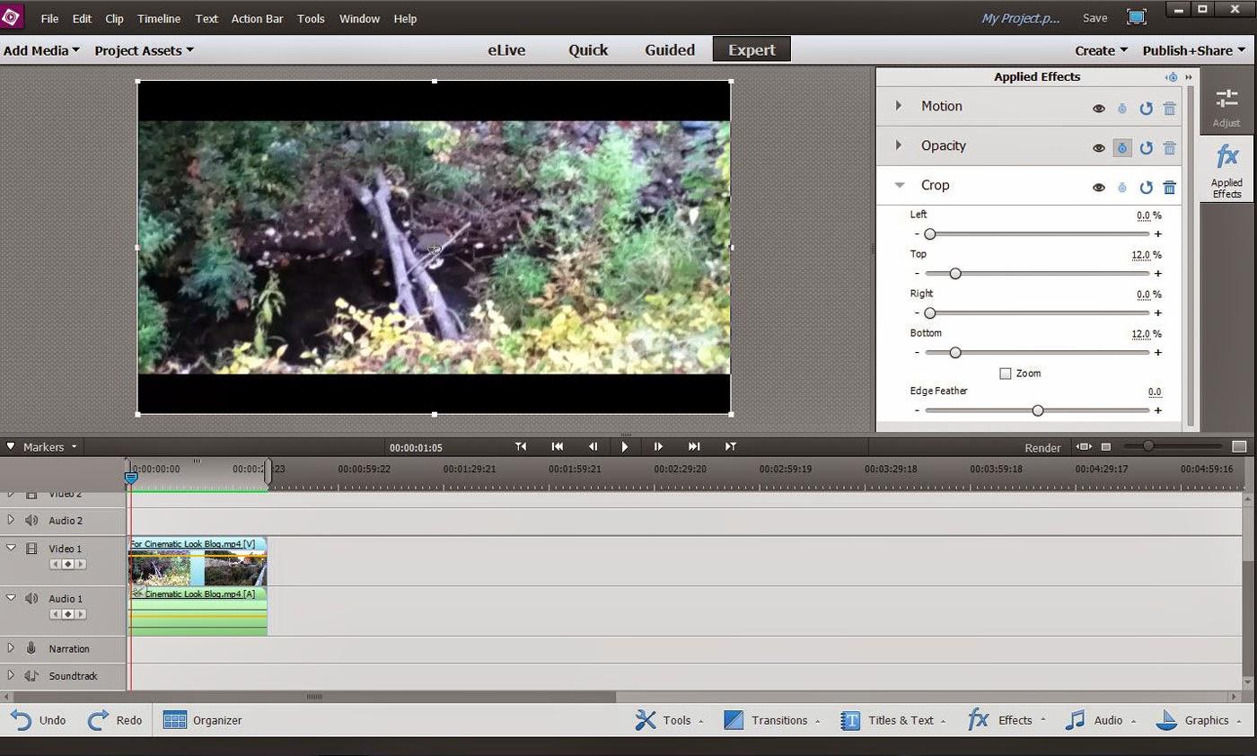 ATR Premiere Elements Troubleshooting: PE13: Video Cinematic