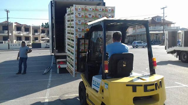 Δωρεάν διανομή φρούτων στην Αργολίδα για πολύτεκνους, τρίτεκνους, κοινωνικά παντοπωλεία και ευπαθείς ομάδες