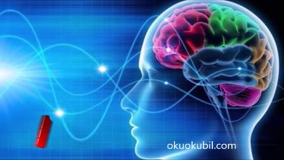 Bilim insanları beyin sinyallerini konuşmaya dönüştürdü: İşte ses kaydı 2019