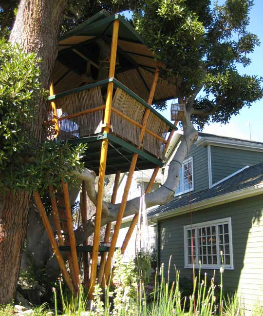 Easy To Build Treehouse: Pictures Of Tree Houses And Play Houses From Around The