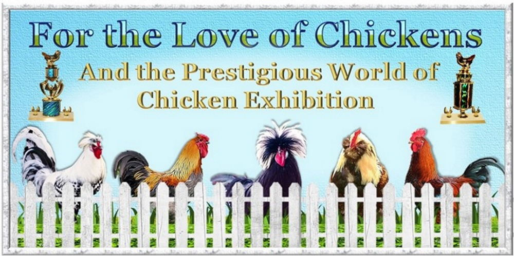 For the Love of Chickens