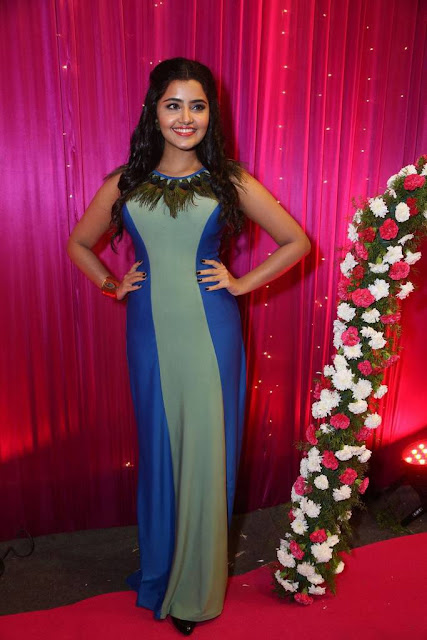Anupama Parameswaran Wiki, Biography, Biodata, Age, Height, Weight, Body Measurements, Family, Education, Affairs and More.