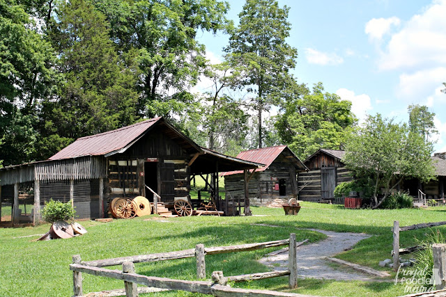 Take a walk through what life in early Appalachia would have been like as you and your family explore the 35 historic log cabins, barns, churches, schools, gardens, and farm land located on the 65 acres that comprise the Museum of Appalachia.