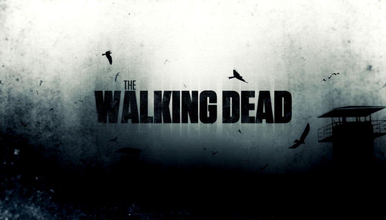 Walking Dead Season Hd Wallpaper Wallpaper Background Hd