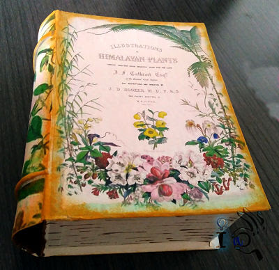 Caja-imitación-libro-frontal-Ideadoamano