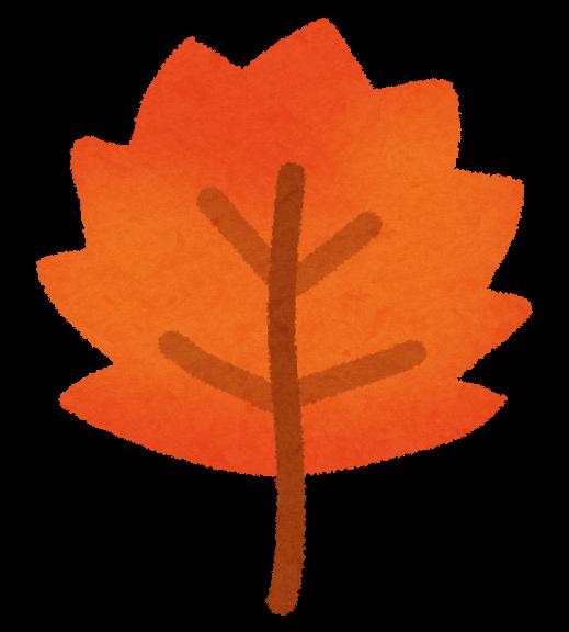 いろいろな落ち葉のイラスト かわいいフリー素材集 いらすとや
