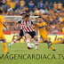 Ver EN VIVO Tigres vs Cruz Azul Liga Mx Clausura 2018