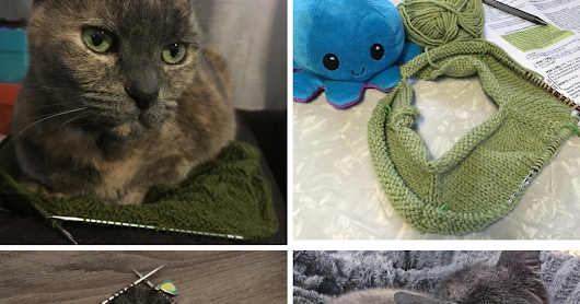 Crafty Pets Photo Contest from Knitter's Pride