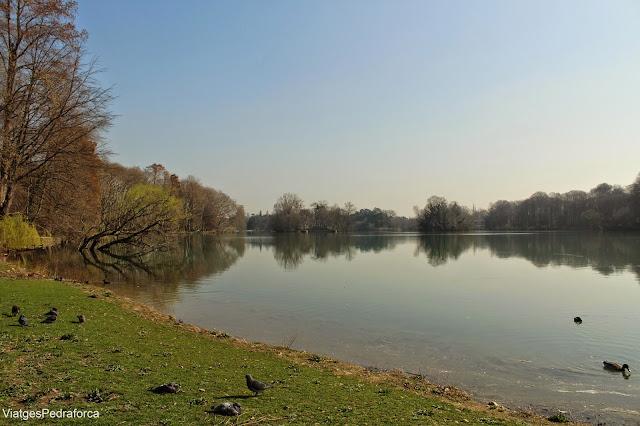 Parc de la Tête d'Or, Lyon, Lió, Rhône, Rhône-Alpes, França, France