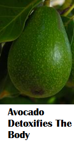 Amazing health benefits of Avocado Butter Fruit Makhanphal - Avocado Detoxifies The Body