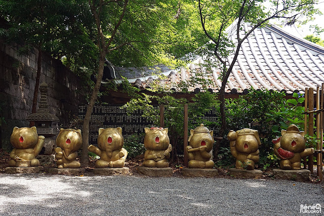 如意輪寺カエル寺、福岡