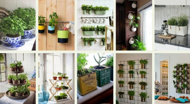 Καλλιεργείστε Μυρωδικά στην ...Κουζίνα σας