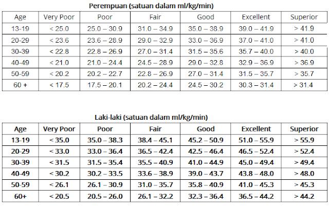 Norma Klasifikasi Tingkat VO2Max