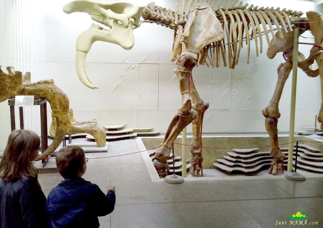 vizita-la-muzeul-de-etnografie.jpg