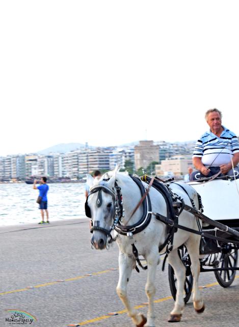 νέα παραλία θεσσαλονίκης