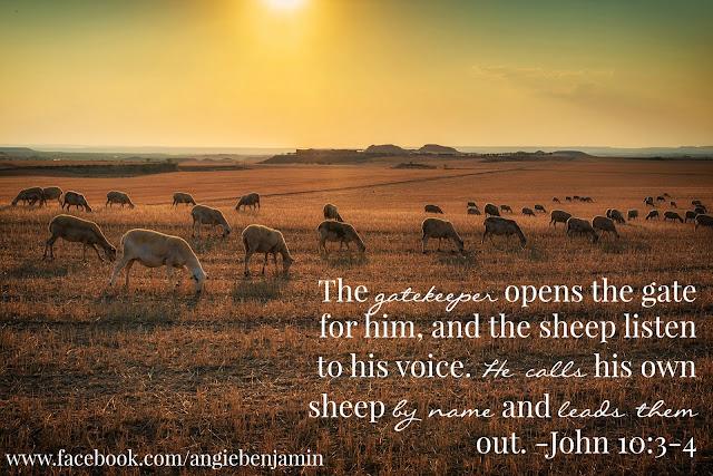 John 10:3-4