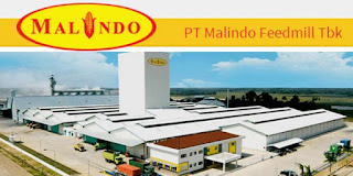 lokasi dan pabrit PT Malindo Feedmill