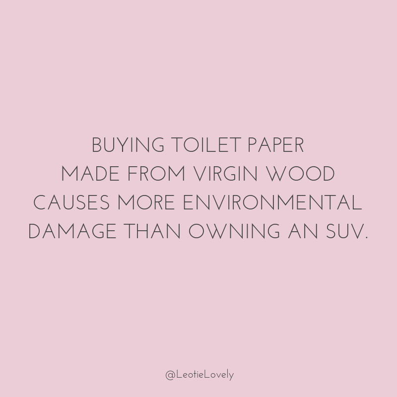 zero waste, toilet paper, loo roll, eco-friendly, unbleached, fsc, ethical, eco-friendly toilet paper, green toilet paper, zero waste, green, zero waste toilet paper, recycled toilet paper, climate action, minimal waste toilet paper, green toilet paper, ethical toilet paper, conscious living, zero waste living, sustainable living, green living, ethical living, zero waste lifestyle, zero waste home, Leotie Lovely, holly rose, sustainable switch