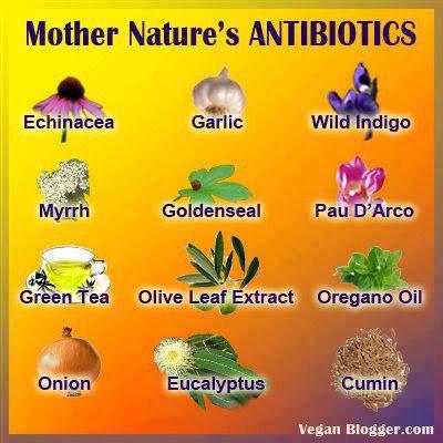 natural medicine journal new zealand